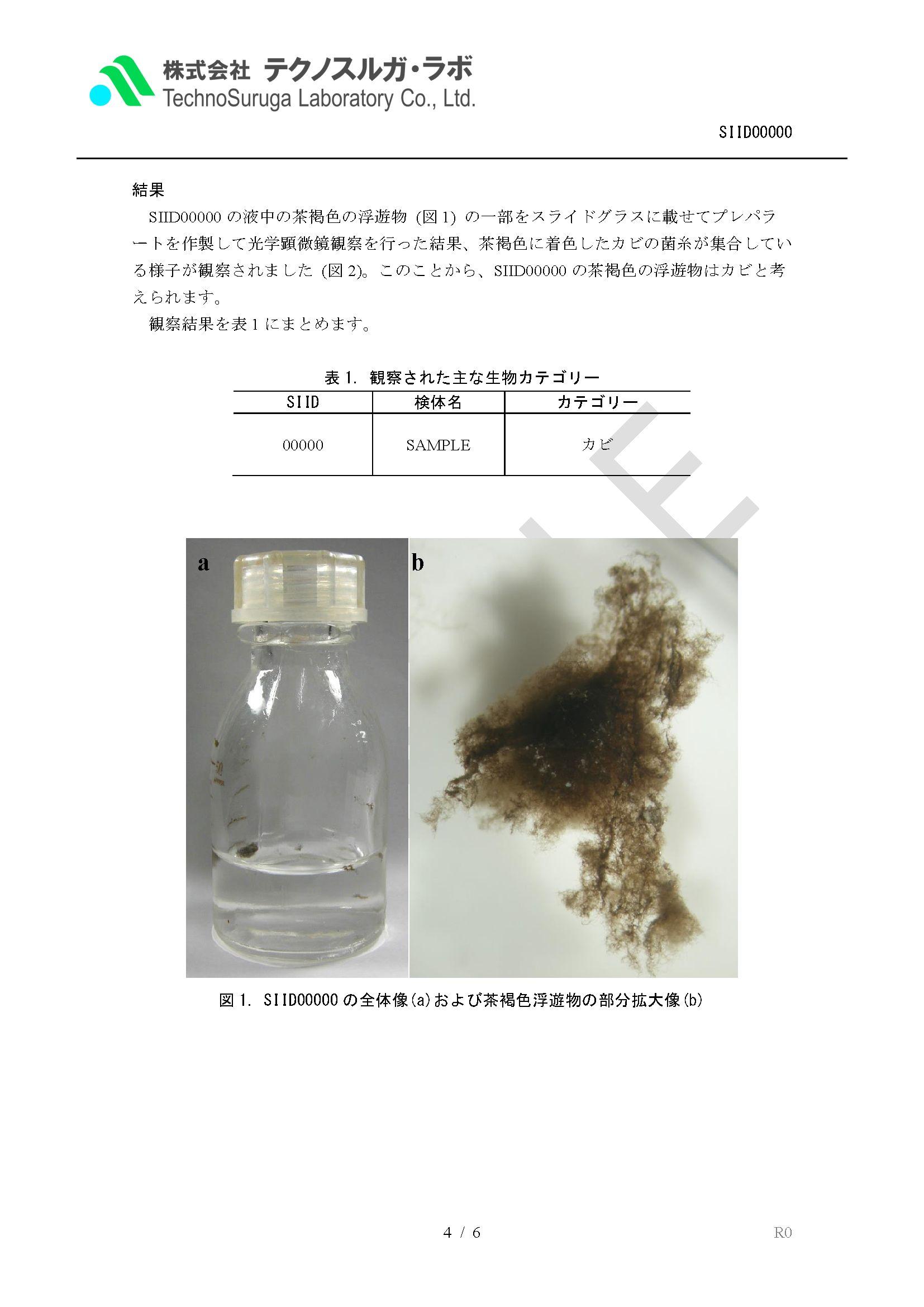 image28_result