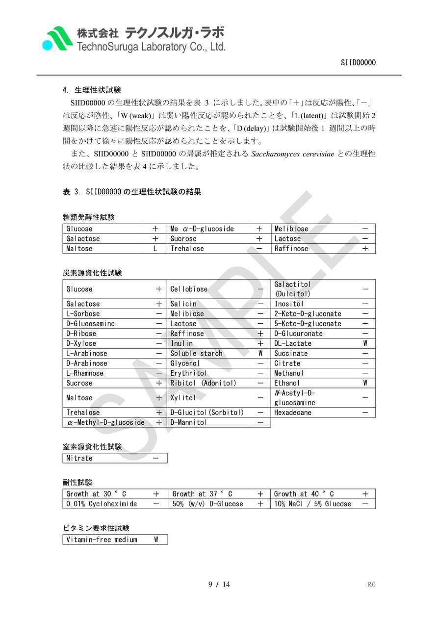 SAMPLE/酵母Premium報告書v4