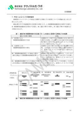SAMPLE/PFGE解析(細菌)報告書v4
