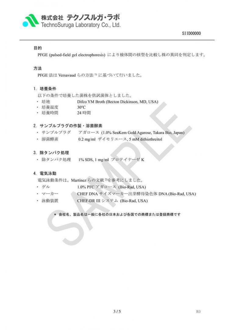 SAMPLE/PFGE解析(酵母)報告書v4