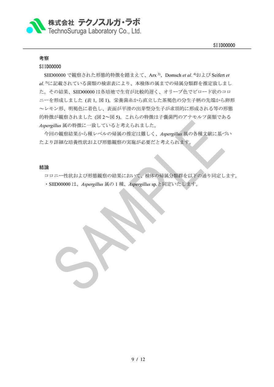 SAMPLE/カビ第一段階試験報告書 V3